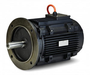 Ac Induction Motors Industrial Marine Offshore Wind Hoyer